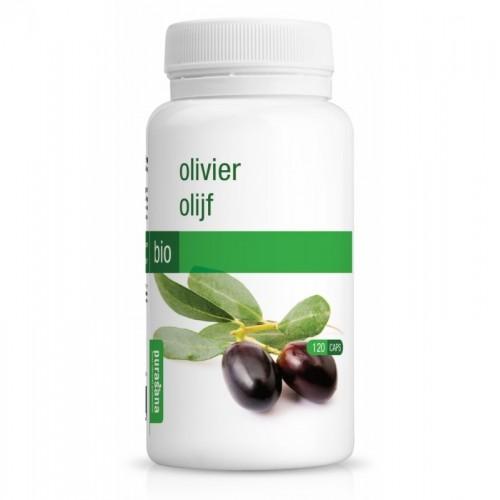 olivo 210 mg purasana 120 capsula bio