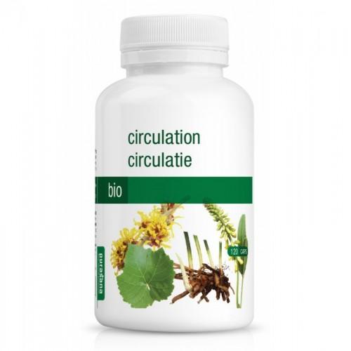 circulacion 250 mg purasana 120 capsulas bio