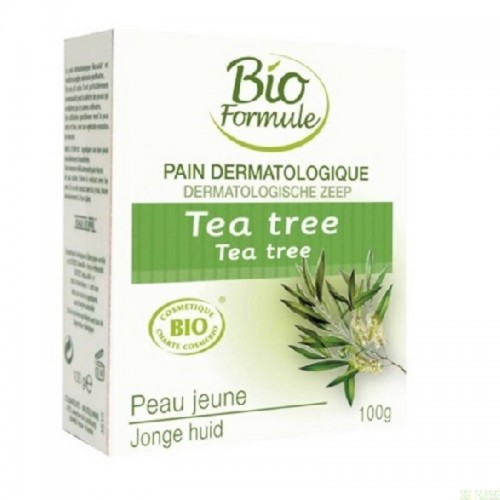 pain dermatologico arbol del te bio formule 100 gr bio