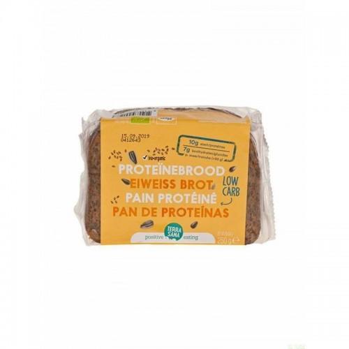 pan proteina terrasana 250 gr bio