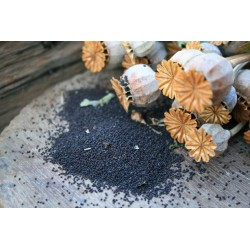 Saco semillas amapola 3 kg BIO