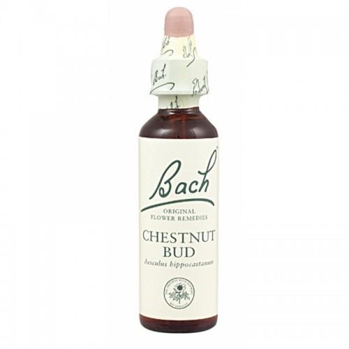 FLOR BACH Chestnut Bud 20...