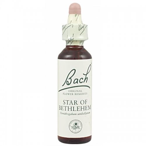 FLOR BACH star of bethlehem...