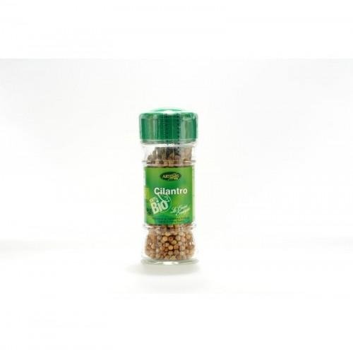 Cilantro semilla especias...