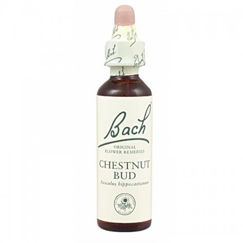 flor bach chestnut bud 20 ml nº7